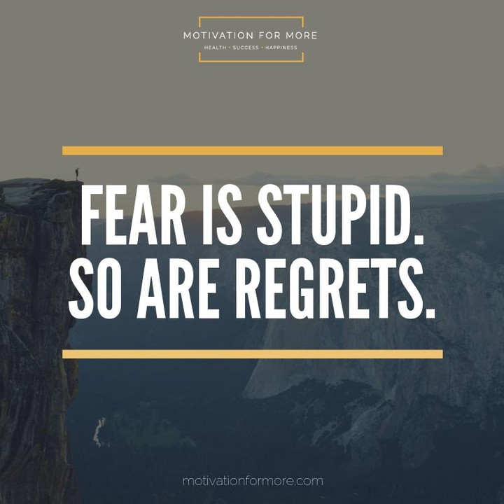 Fear is stupid So are regrets